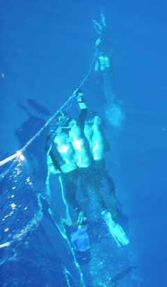 Divers on the Deco after a dive to the Manuela - Dive Hatteras Photo