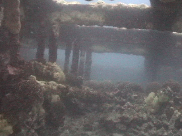 Inside of the stern hold of the SS Hesprides. DiveHatteras photo