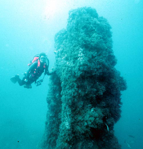 Diver at the top of the Nevada engine. DiveHatteras photo